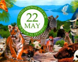 22 მაისი ბიოლოგიური მრავალფეროვნების  საერთაშორისო დღე